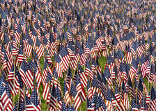 Field of US Flags. A field of red, white, and blue US flags honoring fallen heroes who gave their lives in service of their country Royalty Free Stock Photos