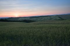 A field in Val d`Orcia also called Valdorcia landscape in Tuscany at sunset. A very popular travel destination in Italy. Val d`Orcia or Valdorcia landscape in royalty free stock photos