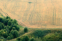 Field view from above Royalty Free Stock Image
