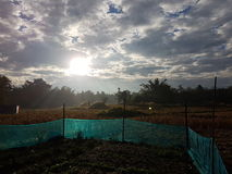 Field view sunset. Royalty Free Stock Images