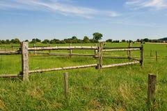 Field in village Stock Photo