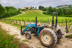 Field with vines and old tractor in Tuscany Royalty Free Stock Images