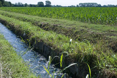 Field and water channel Royalty Free Stock Image
