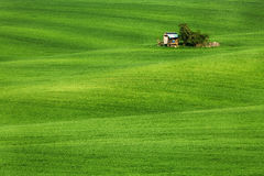 Field waves with hut, South Moravia Stock Photography