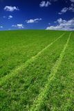 Field Way Royalty Free Stock Images