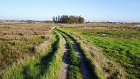 Field way on the green field at Esteiro da Tojeira stock video