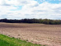 Field in Western Michigan Royalty Free Stock Images