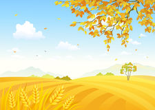 Field of wheat background. Illustration of a farm background with golden wheat fields Royalty Free Stock Image
