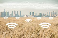 A field of wheat on the background of the modern city. Digital technologies in agriculture. Stock Image