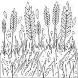 Field of wheat, barley or rye. Black and white coloring book page. Vector Illustration of wheat or barley growing on a field. Vector black and white illustration Stock Image