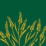 Field of Wheat. Barley or Rye  visual illustration, yellow on green background Stock Image