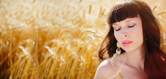 A field of wheat. Beautiful woman. Eyes closed, sensual lips. Ears of Golden wheat closeup. The concept of a rich harvest. Copy space for your text. A wide Royalty Free Stock Photo