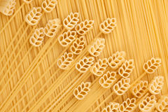 A field of wheat, a conceptual image of pasta Royalty Free Stock Photos