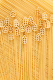 A field of wheat, a conceptual image of pasta Stock Images