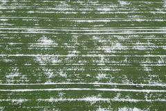 Field of wheat covered with snow. Spring Time Top View. Aerial View Royalty Free Stock Images