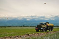 Field of wheat in front of mountains royalty free stock photography