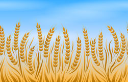 Field of wheat landscape background. Field of wheat, vector natural golden bread landscape background Royalty Free Stock Photography