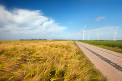 The field of wheat with wind engine Stock Photos