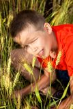 In a field where a lot of wheat ears grows, he plays with strings, a cheerful boy. Rest in the summer holidays Stock Images