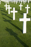 Field with white crosses Royalty Free Stock Image