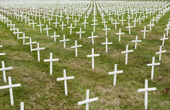 Field of white crosses Stock Images
