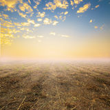 Field Wide Open Spaces and sunset orange sky Stock Photography