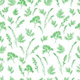 Field wild grass leaves and twigs seamless pattern. Spring natural decorative element background Royalty Free Stock Images