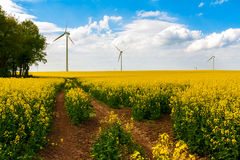 Field wind mill turbines farm landscape rape Stock Photo