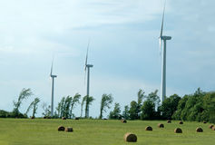Field of Wind Mills Stock Images
