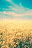 Field and wind turbine Stock Image
