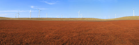 A field of wind turbines Stock Photo