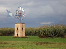 field windmillen Arkivfoton