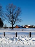 Field in winter. Covered by snow Royalty Free Stock Photos