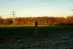 Field in winter evening light stock image