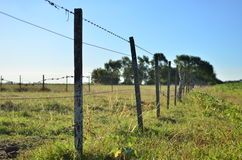 Field wire fence Royalty Free Stock Image