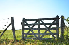 Field wire fence Stock Image