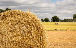 Free Field With Freshly Bales Of Hay Royalty Free Stock Photos - 96798218