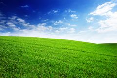 Free Field With Green Grass And Sky With Clouds. Clean, Idyllic, Beautiful Summer Landscape With Sun. Royalty Free Stock Image - 114588386