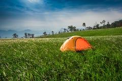 Field Wonderful Land Stock Image