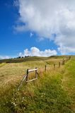 Field with wooden fence Royalty Free Stock Photo