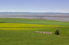 Field with wooden fence and view across the sea Stock Photo