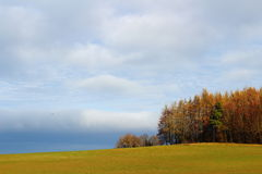 Field and woodland scenery by cloudy sky Stock Image