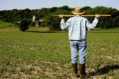 Field worker farmer Royalty Free Stock Image