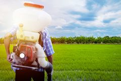 A field worker is spraying royalty free stock photography