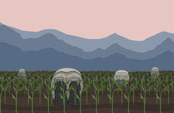 Field works. Illustration of agricultural workers working at field Royalty Free Stock Images