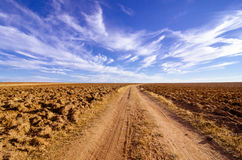 Field Zamora (Spain) Royalty Free Stock Image