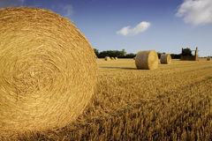 Field01. Hay balls and an old farm in the background royalty free stock images