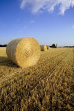 Field02. Hay balls and an old farm in the background stock image