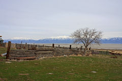 Fielding Garr Ranch, Utah. Ranch on Antelope Island in the Salt Lake Stock Photography