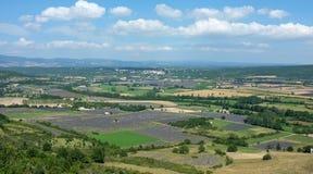 fields лаванда Стоковое Фото